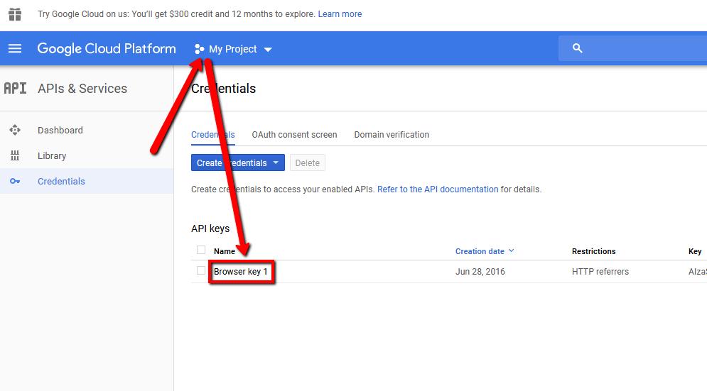 google maps api key credentials